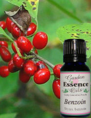 Garden Essence OIls Benzoin