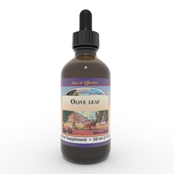 Olive Leaf extract, 4 oz  Olive Leaf extract