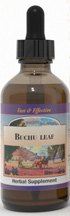 Buchu Leaf extract, 2 oz.  Buchu leaf extract