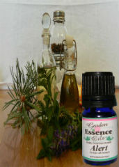 Alert, 15 ml. Garden Essence Oils Alert,essential oil for memory,essential oil for alertness