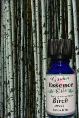 Birch Bark, 15 ml. Garden Essence Oils Birch Bark,Birch Bark essential oil
