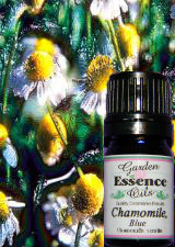 Chamomile, Blue/German 15 ml. Blue Chamomile,Blue Chamomile essential oil