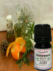 LGD, 15 ml. Garden Essence Oils LGD Blend,essential oil for cleansing the liver,essential oil for cleansing the lymphatic system
