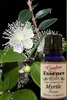 Myrtle Flower, 5 ml. Garden Essence Oils Myrtle Flower,myrtle flower essential oil
