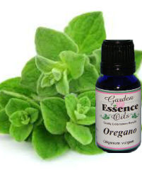 Oregano, 15 ml. Garden Essence Oils Oregano,oregano essential oil