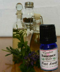 Pest Away with Catnip, 15 ml. Garden Essence Oils,Pest Away,natural bug replellant