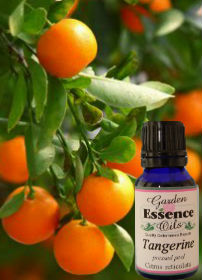 Tangerine, 15 ml. Garden Essence Oils Tangerine,tangerine essential oil